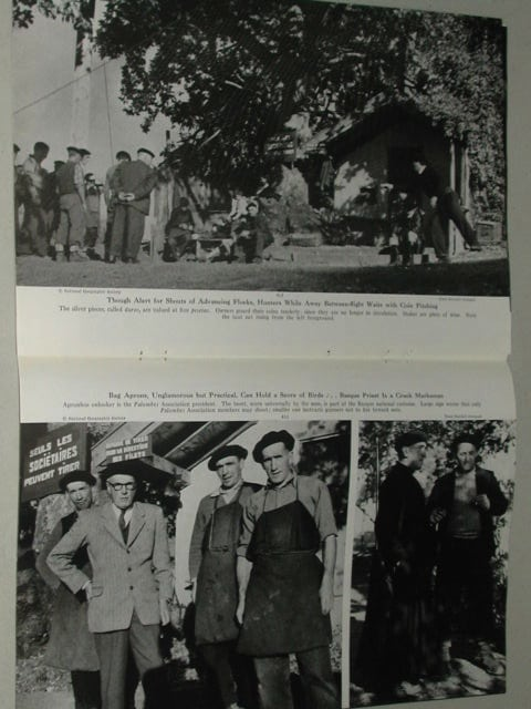 revista-caza-palomas-1949-5