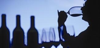 Cómo catar vinos terroaristas.com