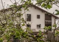 Reportaje de la DWR5 alemana sobre la sidra y las sidrerías vascas