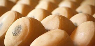 Queso de Idiazabal en el reportaje sobre gastronomia vasca del Burton Mail