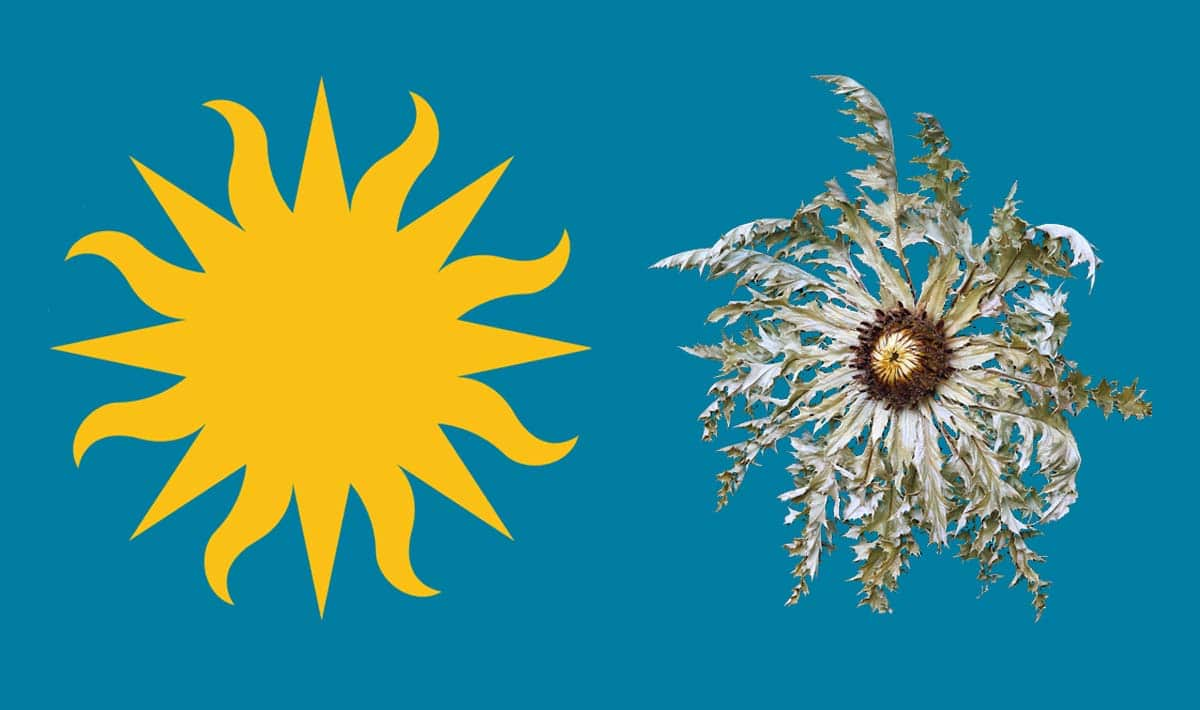 """The Smithsonian """"Sun"""" is turned into a Basque Eguzkilorea for the 2016 Folklife Festival"""