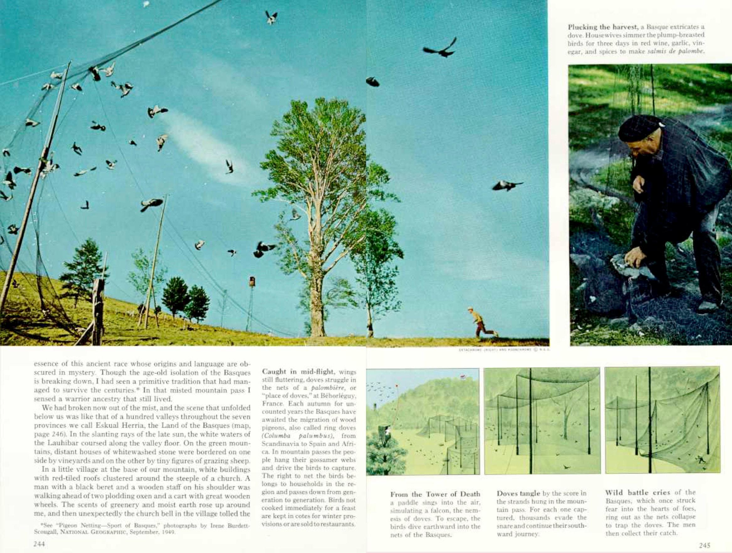 Euskaldunek usoak beraien migrazio garaian ehizatzeko era tradizionalari buruz 1968an National Geographicen argitaratutako Robert Laxaltek sinatutako artikulua.