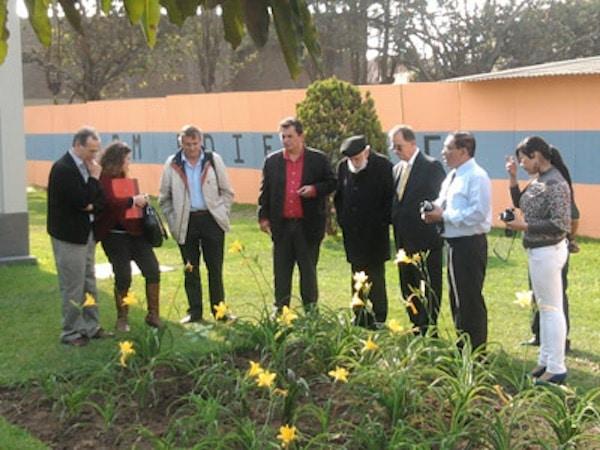Plantación de un retoño del Árbol de Gernika en Lima